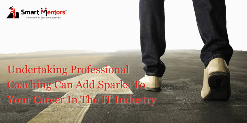 Undertaking Professional Coaching Can Add Sparks To Your Career In The IT Industry