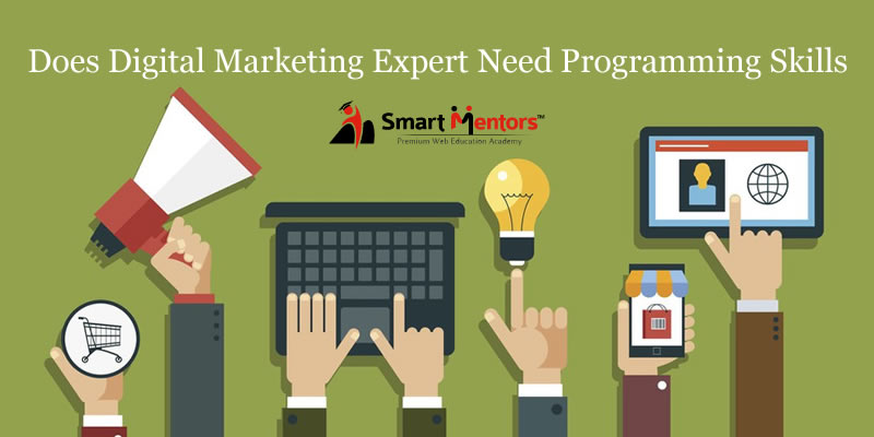 Does Digital Marketing Expert Need Programming Skills?